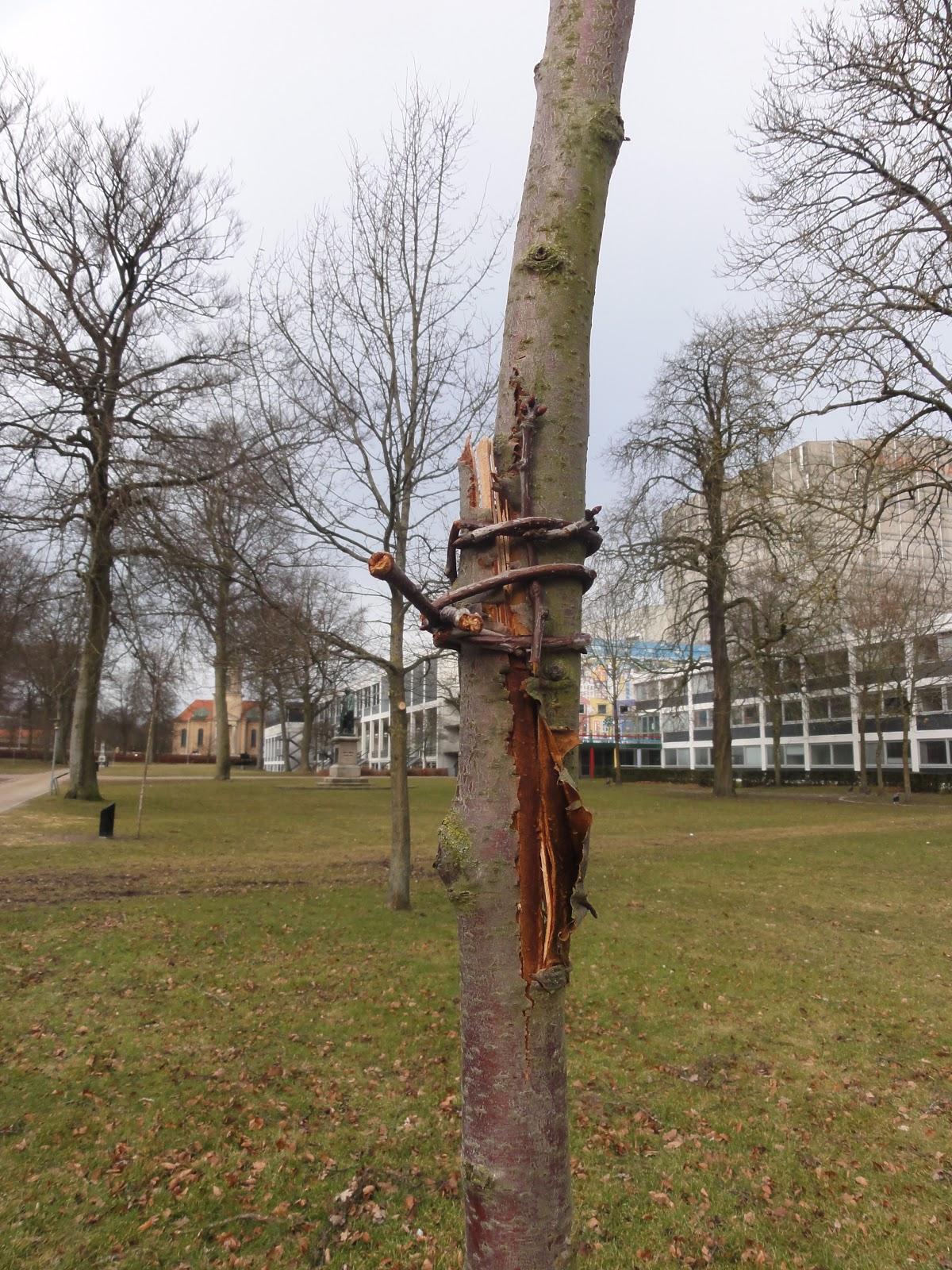 gruppesex sex vestsjælland
