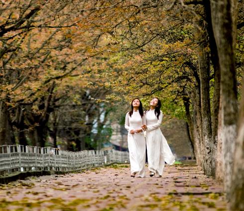 http://3.bp.blogspot.com/-ttK6dqW7K5c/TkJPOyJdgGI/AAAAAAAAAc0/Wig5uapDlUA/s1600/hanoimuahoa3.jpg