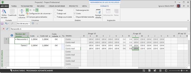 Recurso Tipo Costo - Imagen 3 - Microsoft Project
