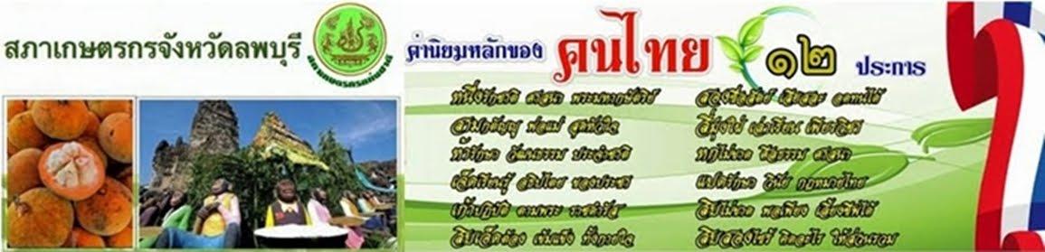 ค่านิยมไทย