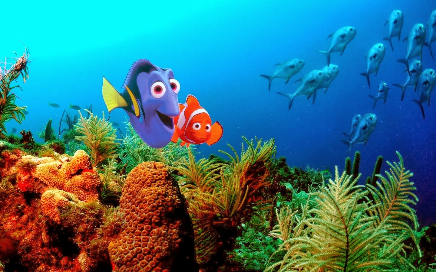 finding nemo coral reef - photo #4