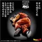 Yamcha HG Exclusive (Hayakukoi Gokuh - Date Prisa Goku)