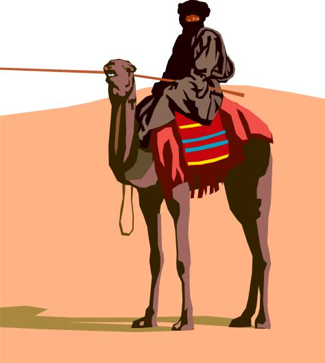 a desert / a camel