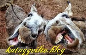 Γίνε αρθρογράφος του kataggeilte.blog