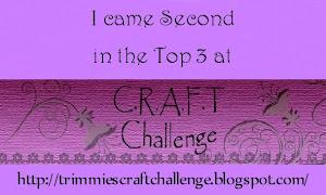 Utfordring # 131 , uke 48 2011