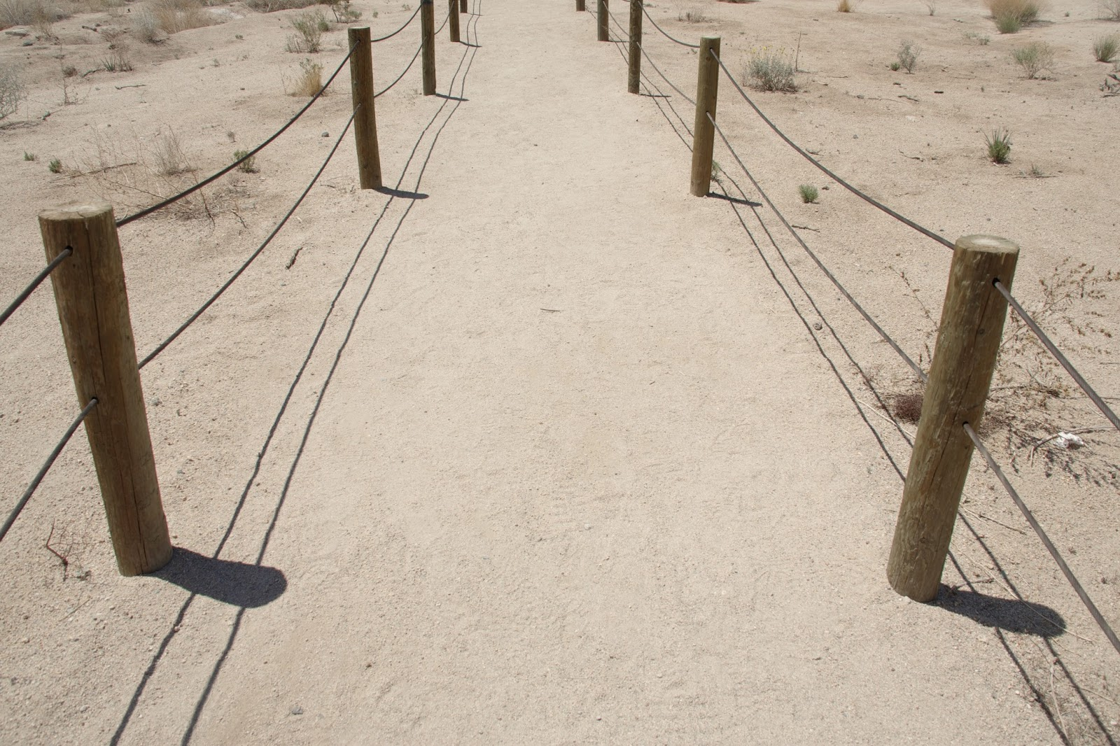 robert frost desert places essay