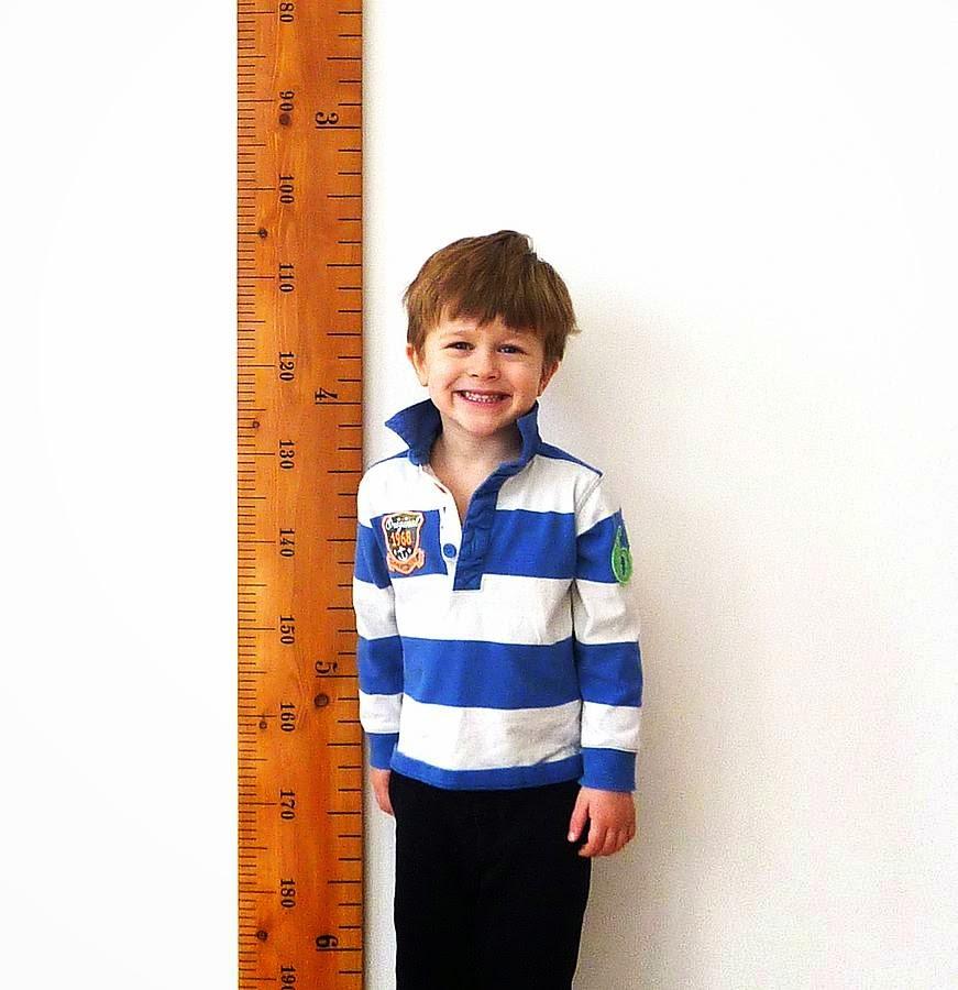 Nutrisi Penting Menambah Tinggi Badan Secara Ideal