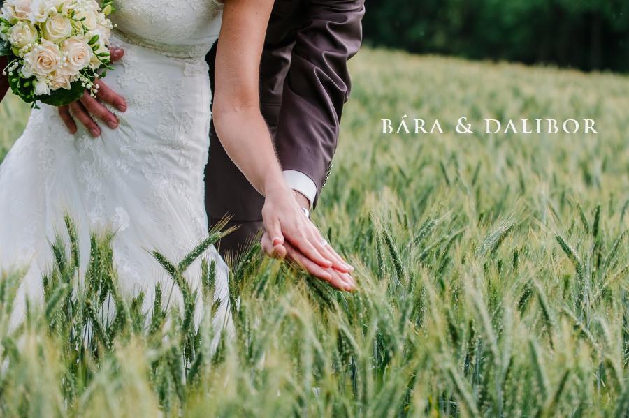 Destination wedding in Klokočov