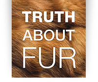 Visit Truth About Fur