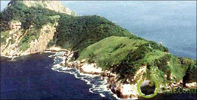 Pulau Lha De Queimada Penuh Ular, Brasil