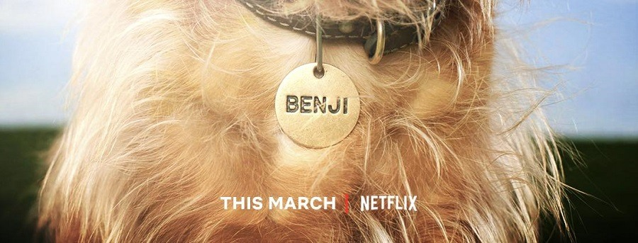Benji 2018 Filme 1080p 720p FullHD HD WEB-DL completo Torrent