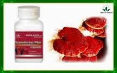 Ganoderma Plus Kapsul