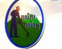 [ CTN TV ] 04-Sep-2013 - TV Show, Agriculture, Kasekam, News