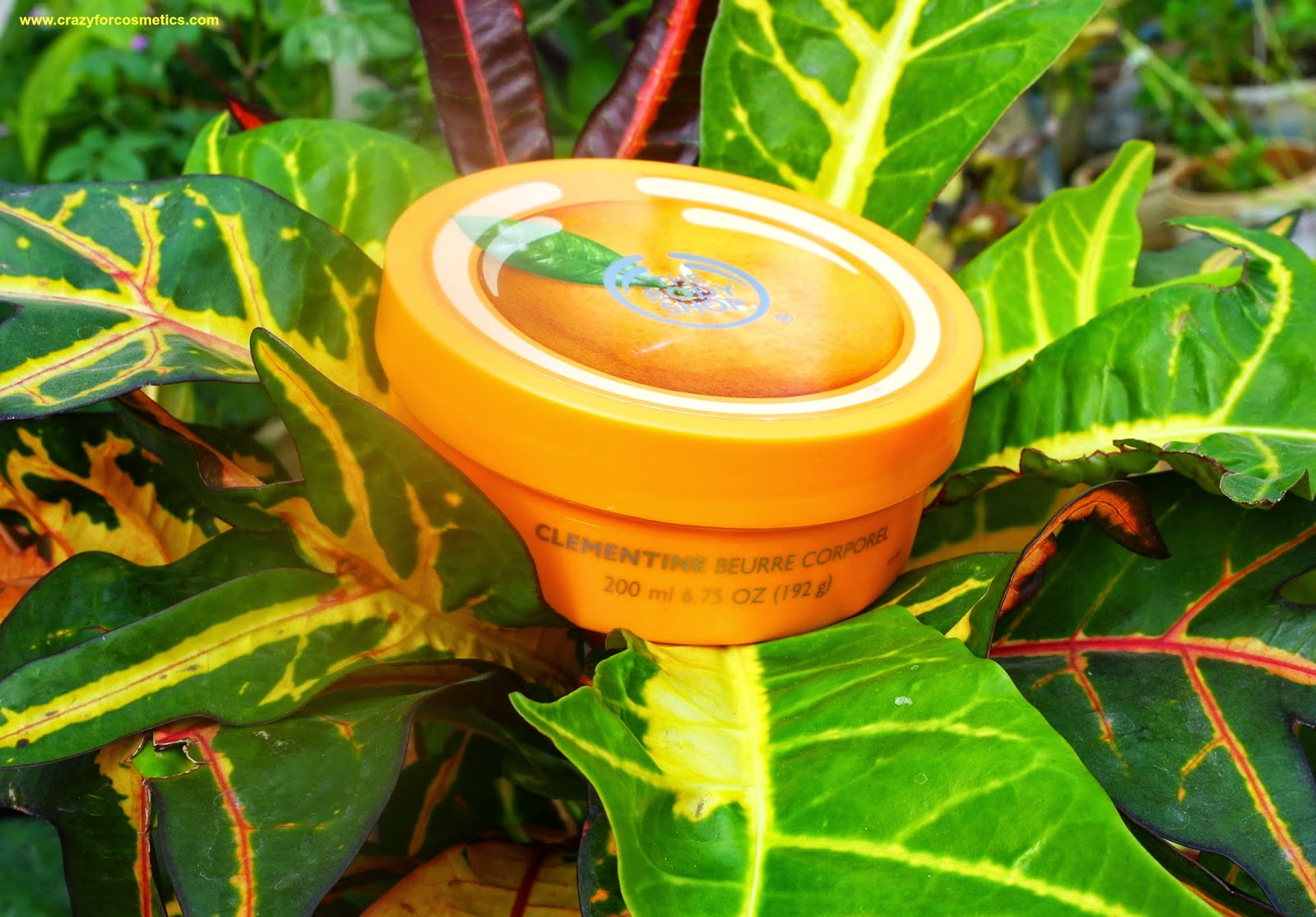 The Body Shop Satsuma Body butter packaging