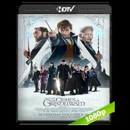 Animales fantásticos: Los crímenes de Grindelwald (2018) HC HDRip 1080p Audio Ingles 2.0 Subtitulada