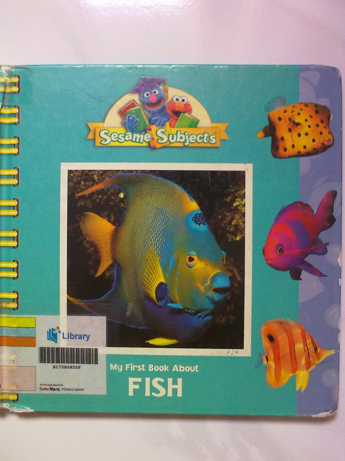 A working queen bee Home learning e fish Two fish Red fish