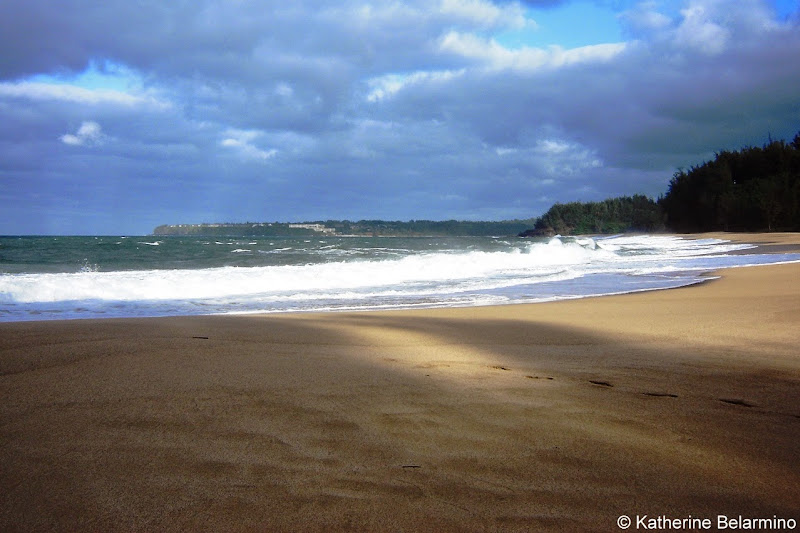 Lumaha'i Beach South Pacific 10 Things to Do in Kauai