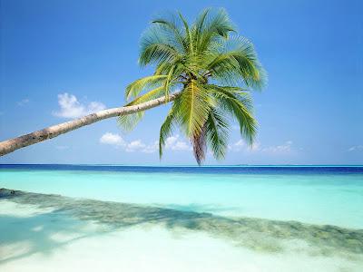 viajes y turismo - playas
