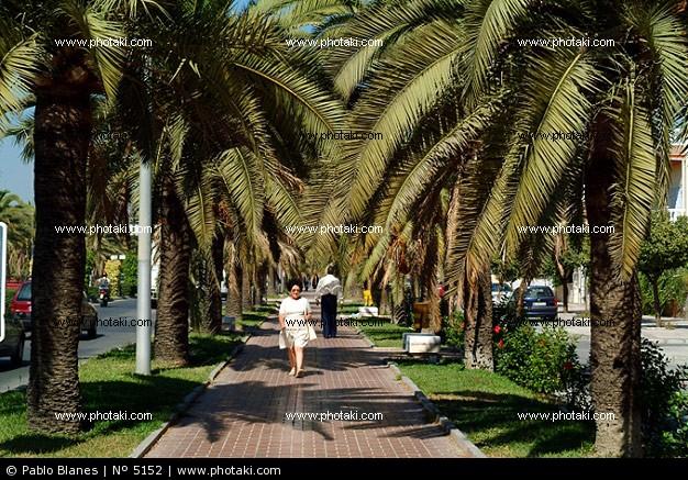 Club bellas artes malaga historia de ciudad jard n - Ciudad jardin malaga ...