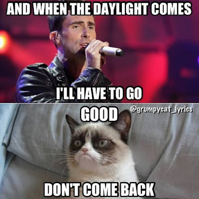 "When the daylight comes I'll have to go. Grumpy Cat tells Adam Levine ""Good, don't come back!""."