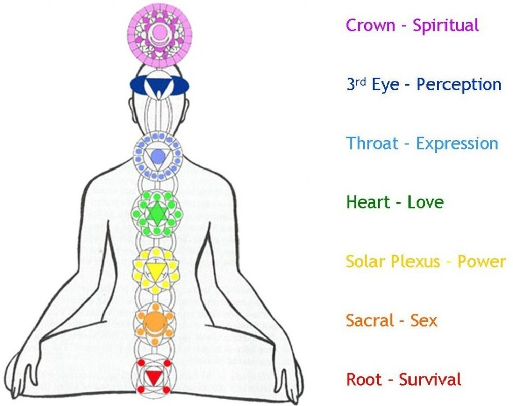 The Root Is Where All Things Begin And First Developed During Our Time In Womb It Source Of Earthly Connection Survival Vitality