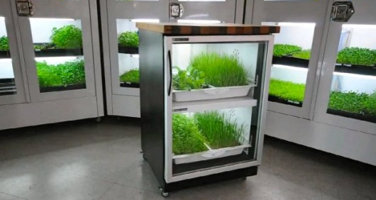 The Urban Cultivator - Automated Gardening in Your Kitchen - 33rd Square
