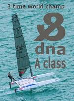 www.racingcats.com