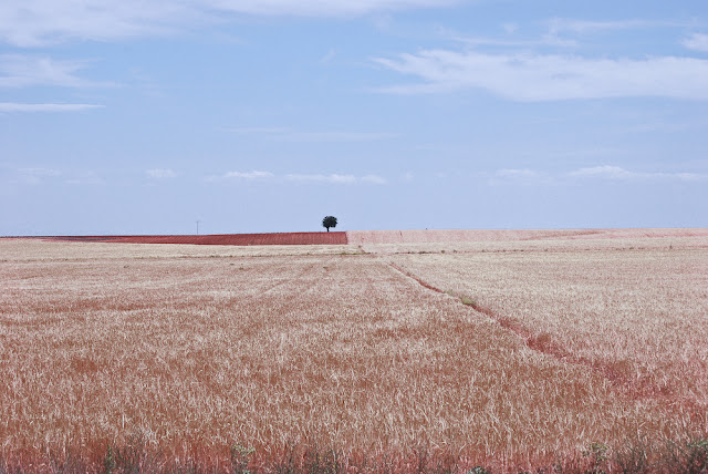 De Tordesillas para Salamanca