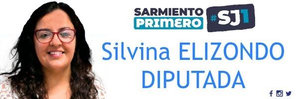 Silvina Elizondo Diputada