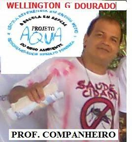 PROFESSOR COMPANHEIRO