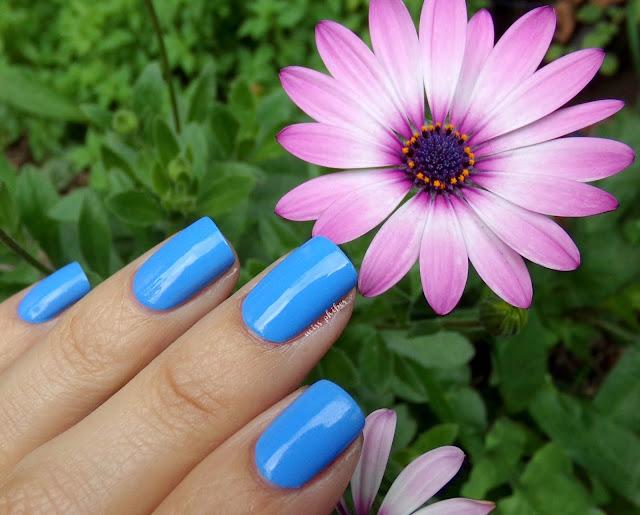 Rimmel Bestival Blue