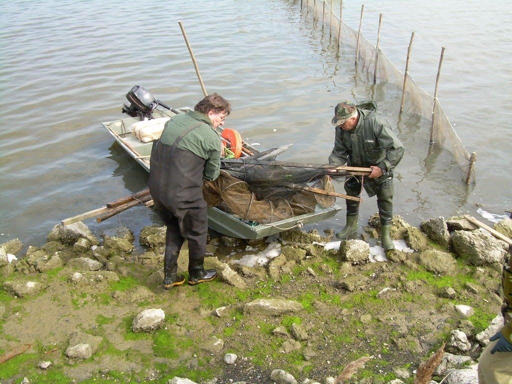 Il forum di pescare 3.0