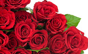 Red Roses Flowers Picture