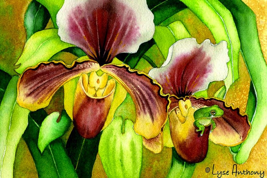 pinturas-bodegones con flores-orquideas