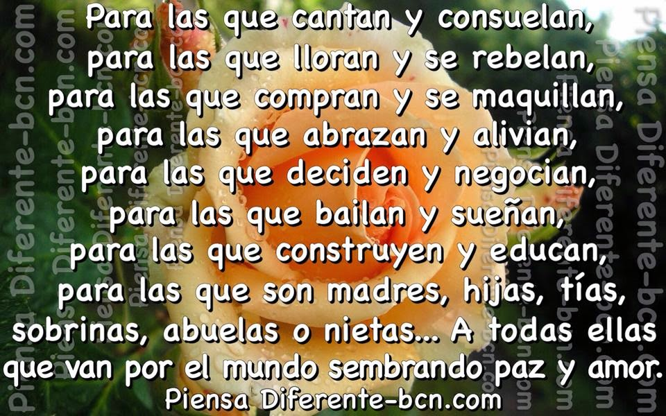 pine cone  EnglishSpanish Dictionary  WordReferencecom