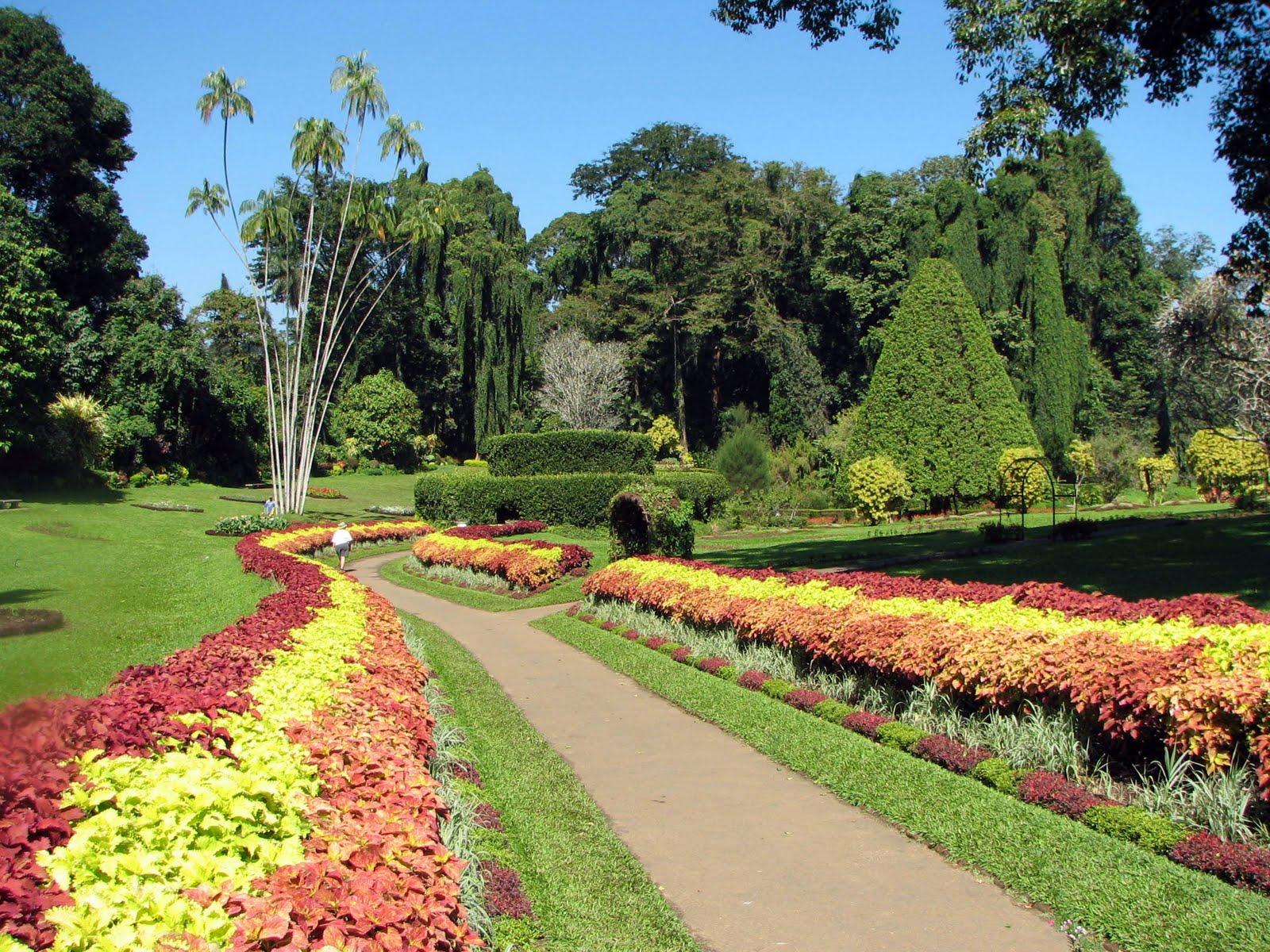 Best visit place botanical garden