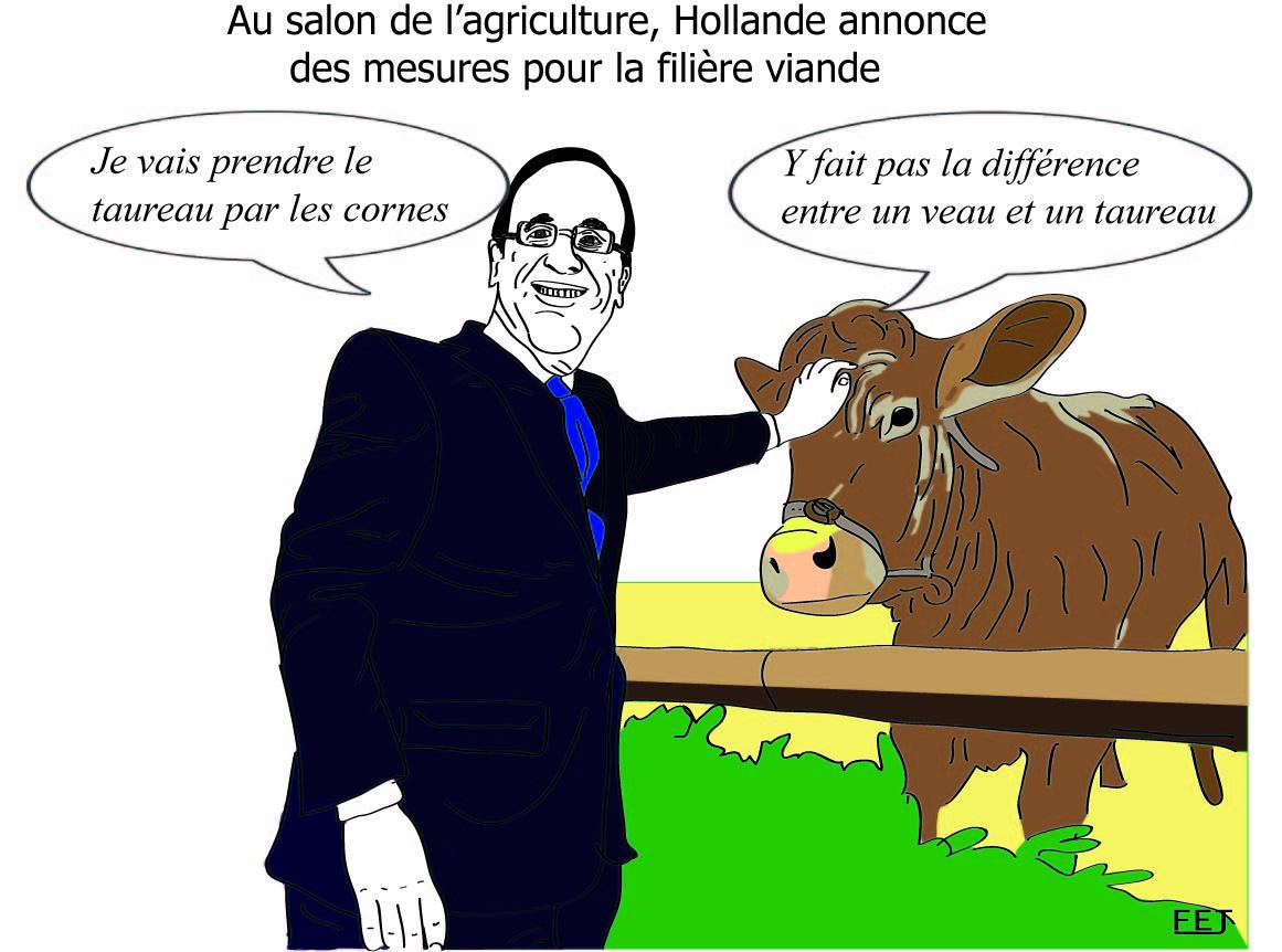 L 39 actualit vue en dessins humoristiques par fej premier for Hollande salon agriculture