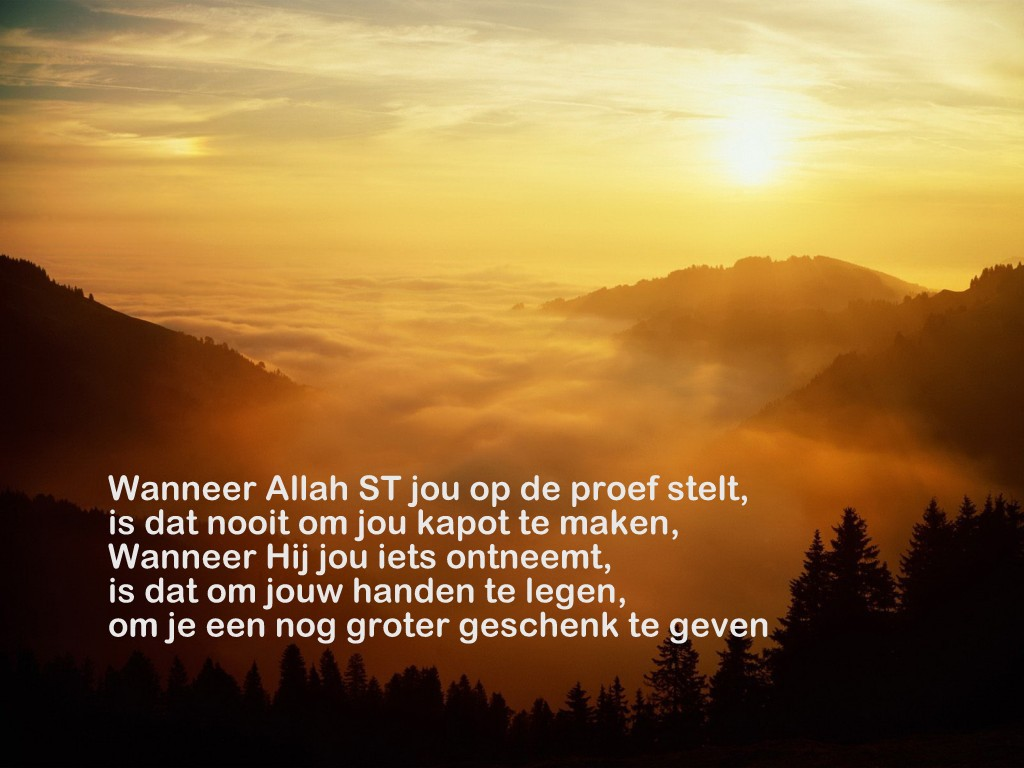Citaten Uit De Koran Liefde : Citaten en wijze woorden uit de islam geschenk van allah st