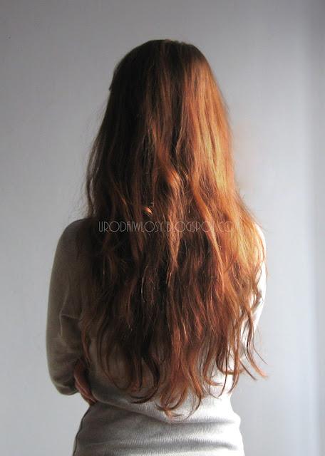 aktualizacja włosów urodaiwlosy.blogspot.com