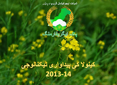 Production technology of canola 2013-14 in urdu