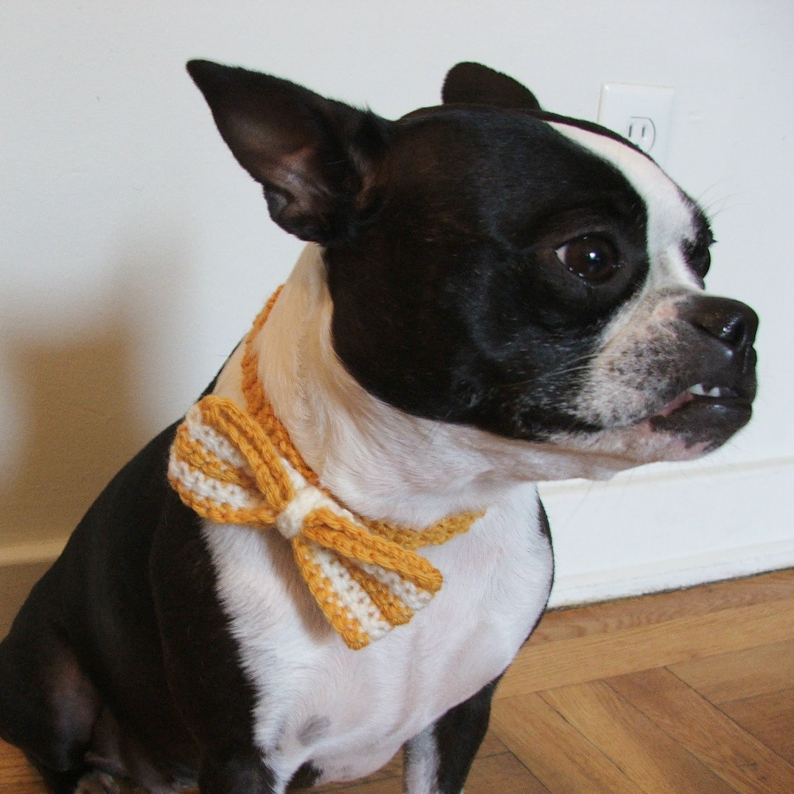 humble carnival: DIY: Doggie Bow Tie - Free Crochet Pattern