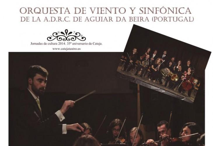 imagen de la orquesta en un anuncio de la actividad