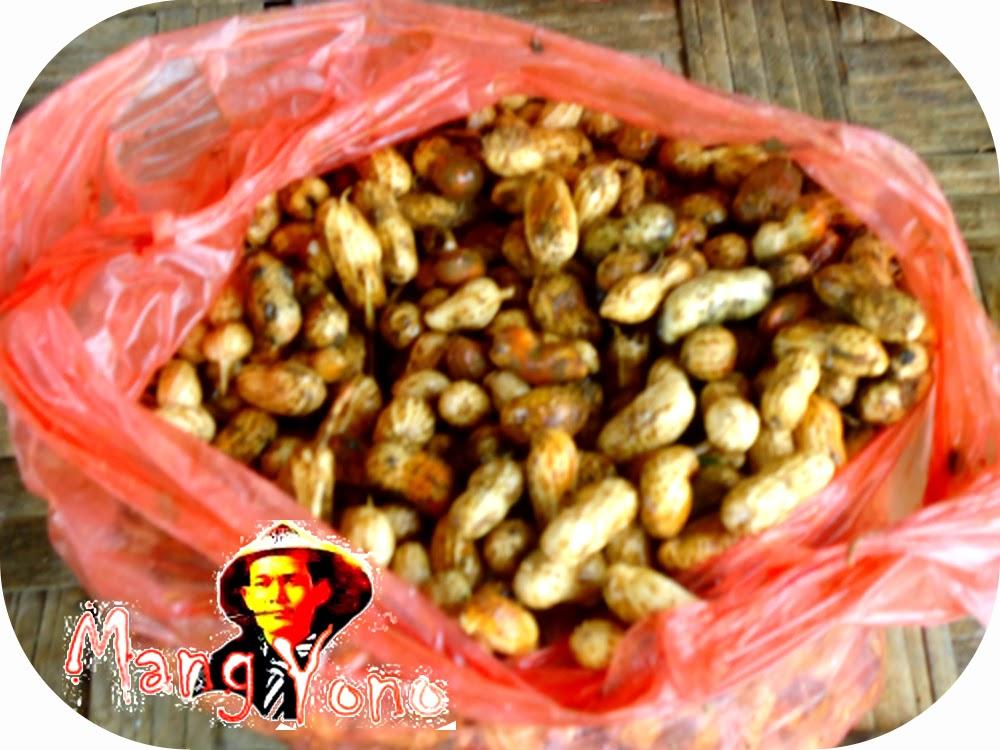 Kacang Tanah masih mentah