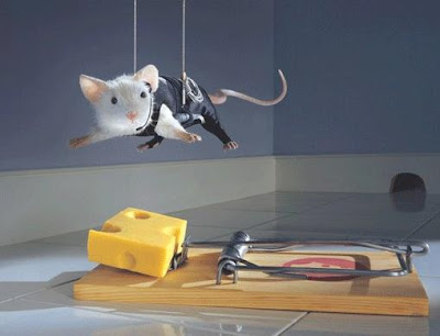 Ratinho Ratoeira