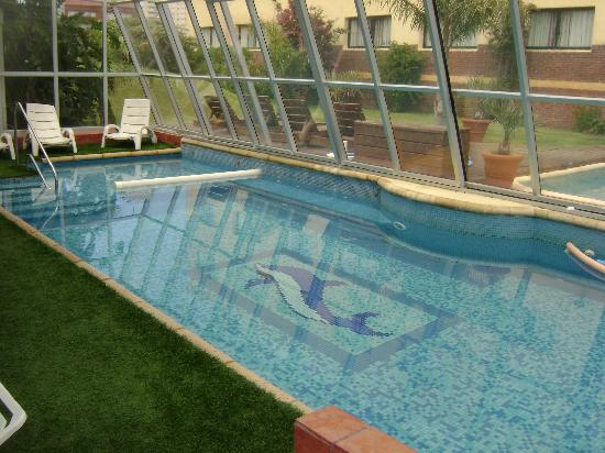Agua y m s las piletas climatizadas for Temperatura piscina climatizada