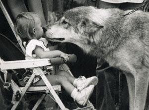 ¿Cómo sería tu personaje si...?  - Página 4 Wolf_and_child