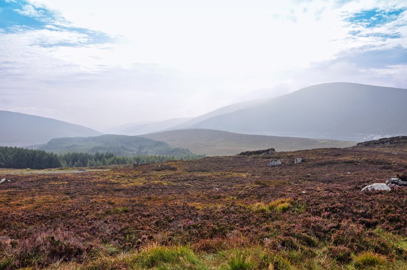 Irland 2014 - Tag 6 | Wicklow Mountains
