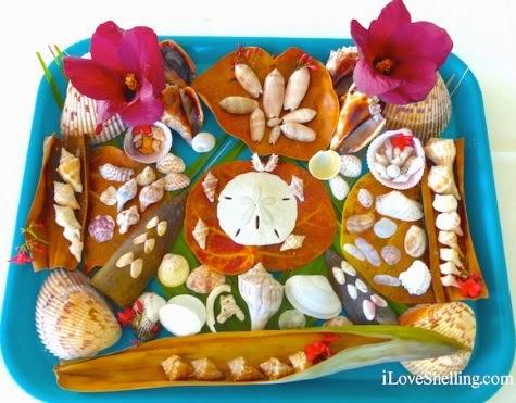 Sanibel Island Shell Crafts