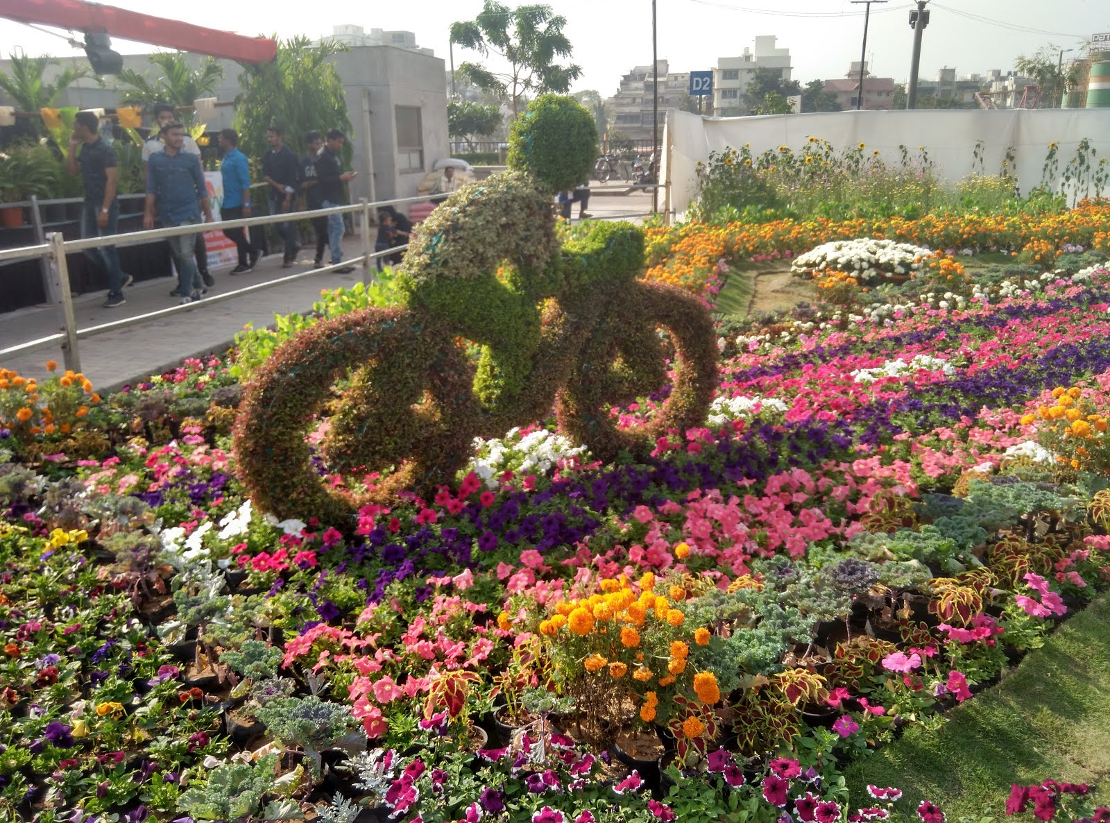 Flower park flower garden at sabarmati riverfront for Flowers landscape gardening