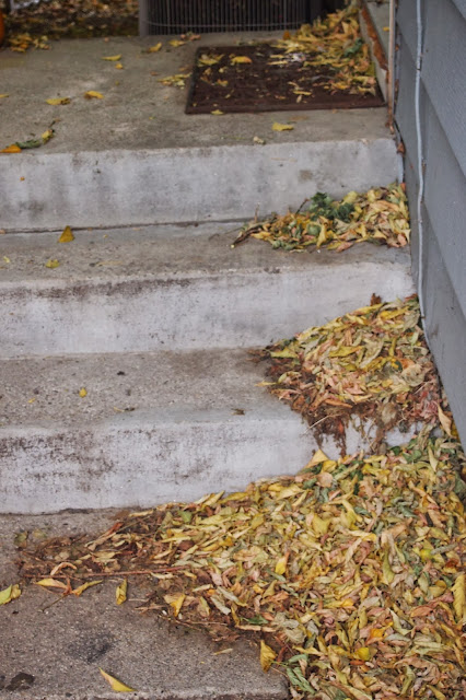fall+leaves+on+stairway - Stepping Stones